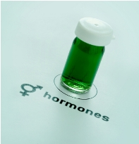 Post image for Are Bio-identical Hormones & Synthetic Hormones the Same?