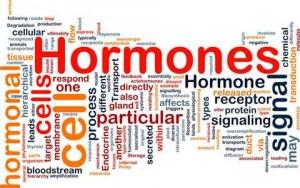 hormone (480x300)