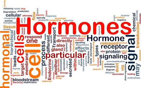 Hormone Therapy in Perimenopause: The Truth behind the Women's Health Initiative Study